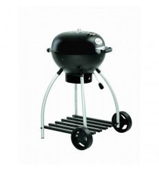 BARBECUE SPORT F 50 ROSLE